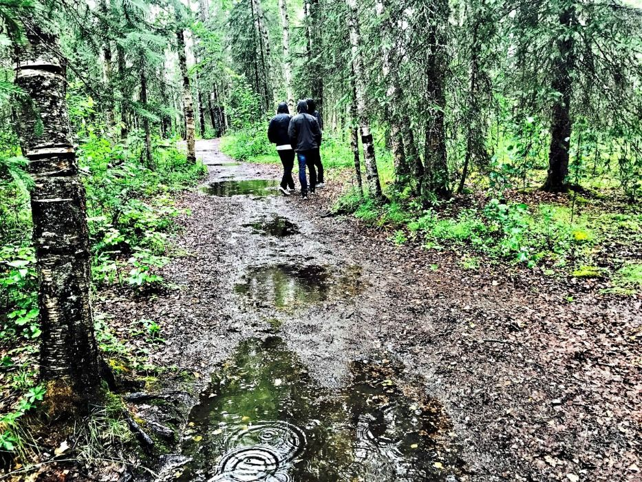 Alaska summer trip Talkeetna Walk