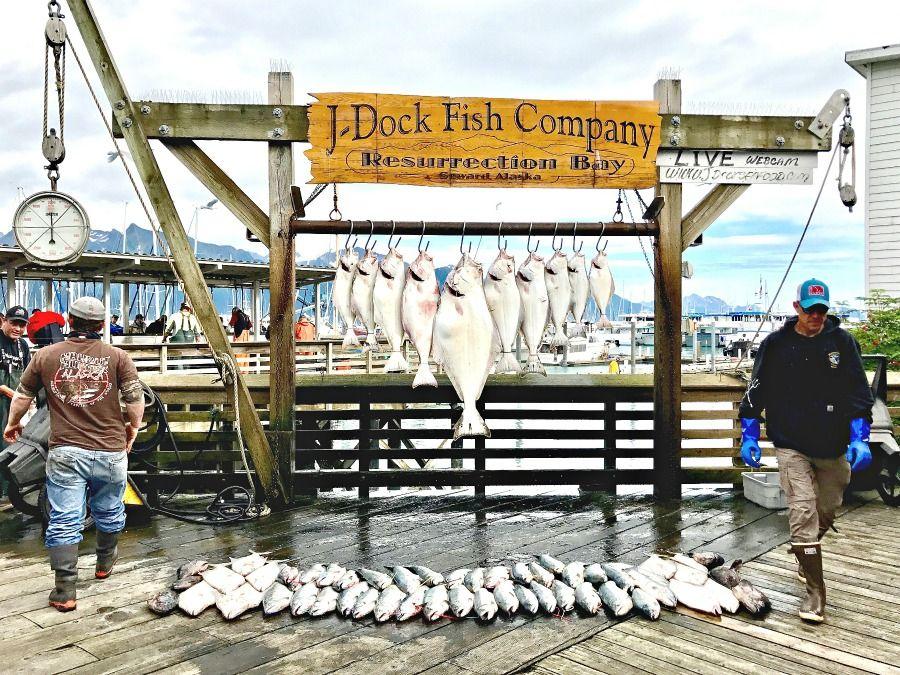 Alaska-summer-trip-fish