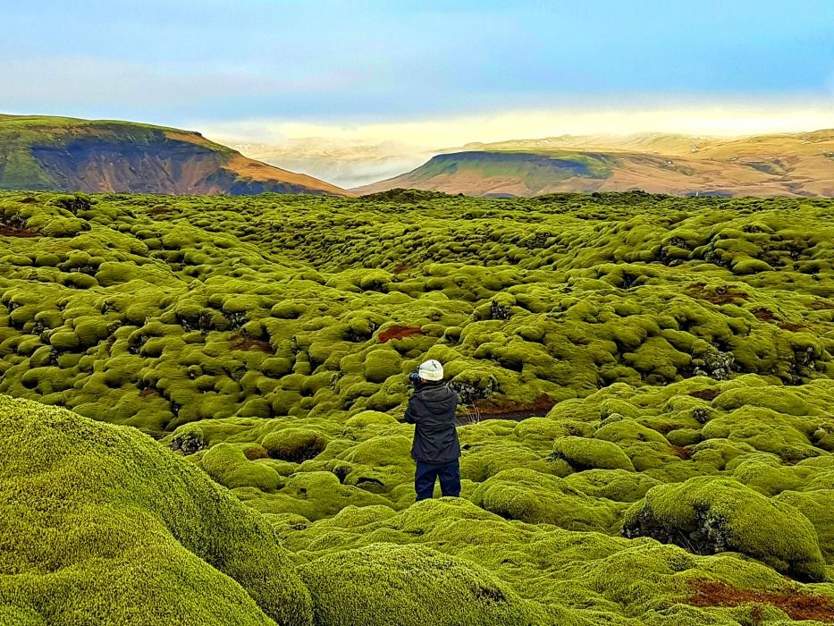 Iceland Ring Road Krafla Lava Field Algae
