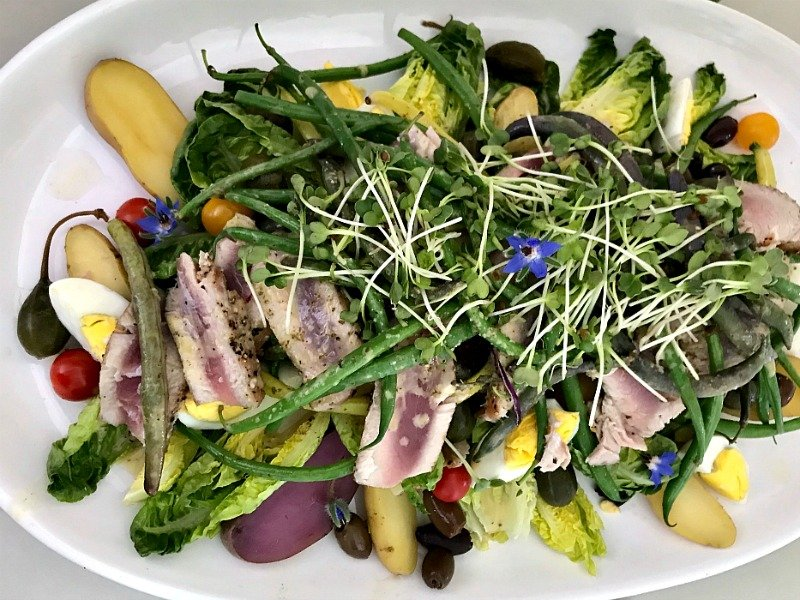 Salad Nicoise Main Course Salad Recipes