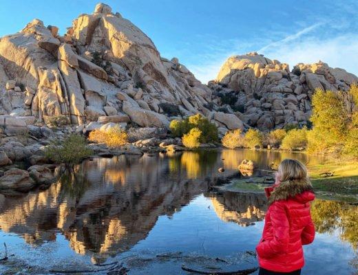 Joshua Tree Weekend USA National Park