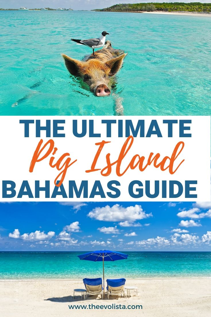 Things to do in Exuma Bahamas Pin