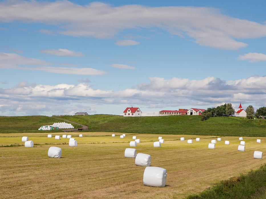 Iceland-Hay-Bales