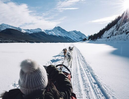 Banff in Winter Dogsledding